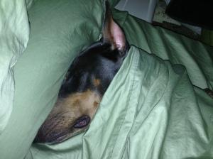 RubySleep